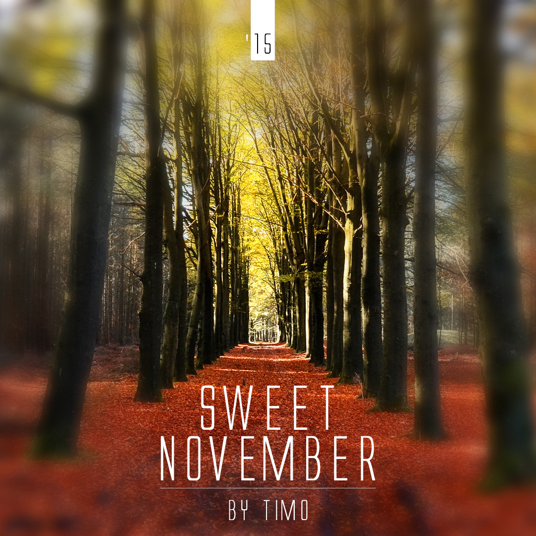 sweet november essay It battle ship potemkin is definitely worth the low sweet november: review asking price shop new, used, rare, and out-of-print books powell's is an independent bookstore based in portland, oregon an exhaustive review of ingredients & sweet sweat results.
